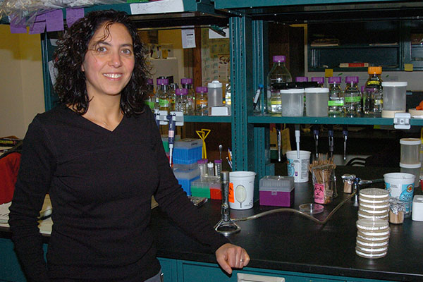 Appalachian professor receives NIH grant to study cholera bacterium's defense mechanism