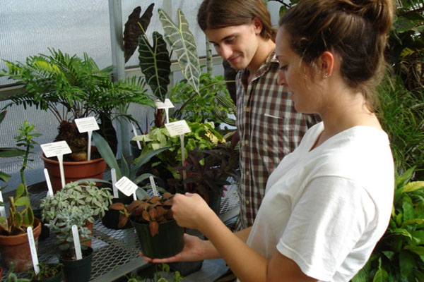 Class on growing and caring for tropical plants held March 21