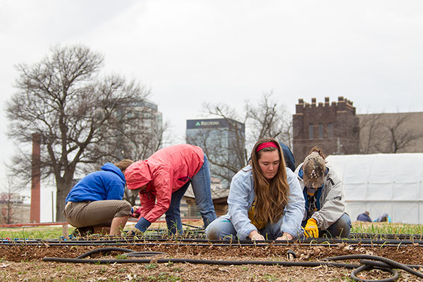 Appalachian students explore social issues during Alternative Service Experience