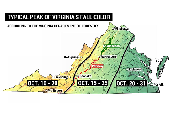 Up-and-down weather is having an effect on fall color in Va. and N.C. mountains