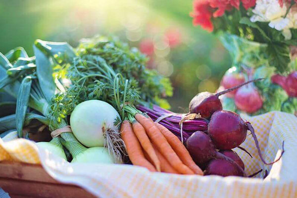 Farm-Fresh Food For Appalachian State Students