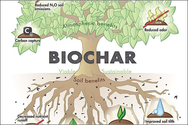 NCDA&CS grant supports Appalachian research of biochar to increase crop yields at local farm