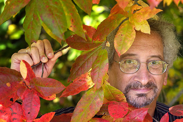 Appalachian's Dr. Howard Neufeld contributes to global research on plant-damaging ozone pollution