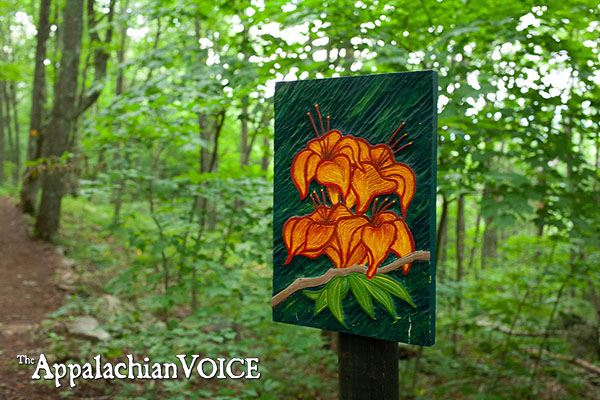 Elk Knob Art Trail Celebrates Nature and Creativity