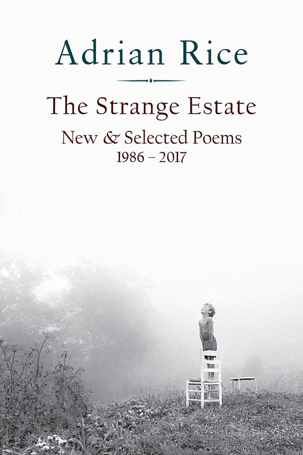 The Strange Estate: New & Selected Poems 1986–2017