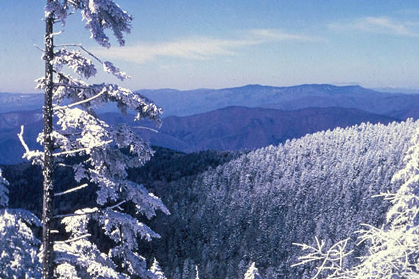 Good news for the Smokies — Appalachian researcher cites air quality improvements