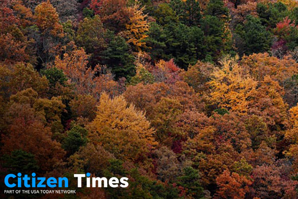 Fall color experts: WNC's fall foliage season expected to be vibrant this year