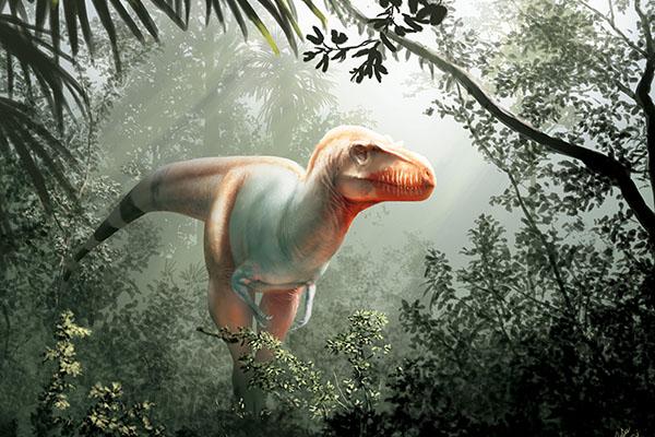 App State alumnus identifies a new tyrannosaur species