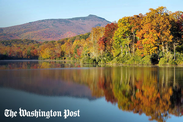 Human-driven climate change is changing the colors of fall foliage, scientists say [faculty quoted]